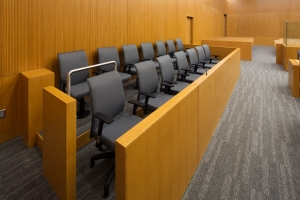 introduction to how important is voir dire