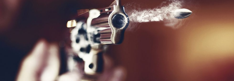 Are Orders of Protection Which Take Guns Constitutional